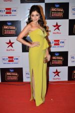 at Big Star Entertainment Awards Red Carpet in Mumbai on 18th Dec 2014 (39)_5494017495cd6.JPG