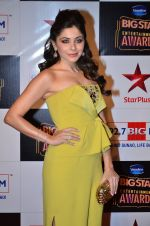 at Big Star Entertainment Awards Red Carpet in Mumbai on 18th Dec 2014 (41)_5494017689dac.JPG