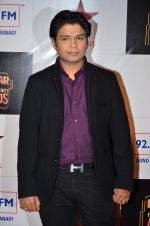 at Big Star Entertainment Awards Red Carpet in Mumbai on 18th Dec 2014 (42)_549401775cba6.JPG