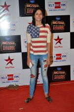 at Big Star Entertainment Awards Red Carpet in Mumbai on 18th Dec 2014 (47)_549401782e728.JPG