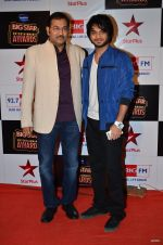 at Big Star Entertainment Awards Red Carpet in Mumbai on 18th Dec 2014 (51)_549401798b587.JPG