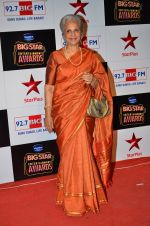 at Big Star Entertainment Awards Red Carpet in Mumbai on 18th Dec 2014 (63)_5494017b50093.JPG