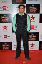at Big Star Entertainment Awards Red Carpet in Mumbai on 18th Dec 2014 (73)_5494017c13d97.JPG
