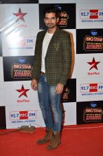 at Big Star Entertainment Awards Red Carpet in Mumbai on 18th Dec 2014 (74)_5494017cc3759.JPG