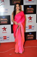 at Big Star Entertainment Awards Red Carpet in Mumbai on 18th Dec 2014 (76)_5494017e81a21.JPG