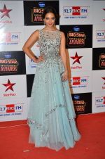 at Big Star Entertainment Awards Red Carpet in Mumbai on 18th Dec 2014 (137)_5494018573e35.JPG