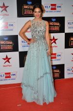 at Big Star Entertainment Awards Red Carpet in Mumbai on 18th Dec 2014 (140)_5494018875912.JPG