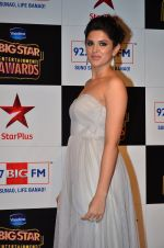 at Big Star Entertainment Awards Red Carpet in Mumbai on 18th Dec 2014 (198)_54940196cce72.JPG