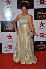 at Big Star Entertainment Awards Red Carpet in Mumbai on 18th Dec 2014 (211)_5494019a396f8.JPG