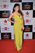 at Big Star Entertainment Awards Red Carpet in Mumbai on 18th Dec 2014 (40)_54940175ac898.JPG