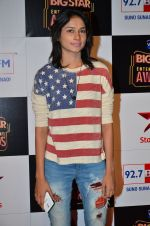 at Big Star Entertainment Awards Red Carpet in Mumbai on 18th Dec 2014 (48)_54940178d1c01.JPG