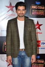 at Big Star Entertainment Awards Red Carpet in Mumbai on 18th Dec 2014 (75)_5494017dbaf3e.JPG