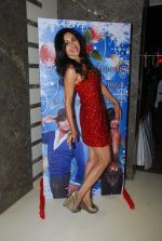 Teejay and Karanvir Bohra_s house warming party in Malad, Mumbai on 20th Dec 2014 (89)_5496a7c1a7c94.JPG