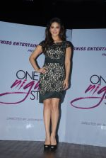 Sunny leone at One Night stand promotions in Mumbai on 24th Dec 2014 (21)_549be73401aef.JPG