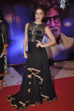 Elli Avram at Yash Chopra Memorial Award in Mumbai on 25th Dec 2014 (131)_549d427cc3b0a.JPG