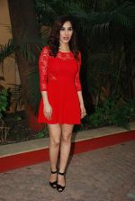 Sophie Choudry_s new years plans in Country Club on 26th Dec 2014 (17)_549e837b41048.JPG