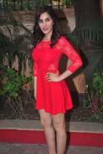 Sophie Choudry_s new years plans in Country Club on 26th Dec 2014 (20)_549e837f401ad.JPG