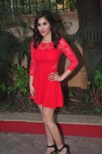 Sophie Choudry_s new years plans in Country Club on 26th Dec 2014 (22)_549e8380824d6.JPG