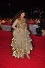 at Dadasaheb Phalke Marathi Awards in Worli, Mumbai on 26th Dec 2014 (13)_549e853ece9c6.JPG