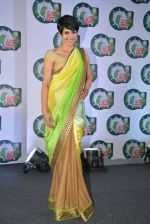 Mandira Bedi spark a debate at Ariel - Is laundry only a woman_s job on 8th Jan 2015 (49)_54af8096ba9a4.JPG
