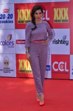 Sophie Chaudhary at CCL Red Carpet in Broabourne, Mumbai on 10th Jan 2015 (97)_54b26be89fbae.JPG