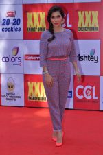 Sophie Chaudhary at CCL Red Carpet in Broabourne, Mumbai on 10th Jan 2015 (98)_54b26beaa08d5.JPG