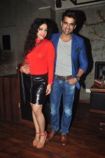 Addite Shirwaikar, Mohit Malik at TV actor Mohit Mallik birthday bash in The Threesome Cafe, Mumbai on 11th Jan 2015 (92)_54b387b91718e.JPG