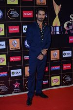 Shahid Kapoor at Producers Guild Awards 2015 in Mumbai on 11th Jan 2015 (144)_54b3713abb15e.JPG