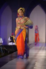 Model walks for Tarun Tahiliani-Azva show in Hyderabad in Tak Krishna on 13th Jan 2015 (201)_54b6621bb8f0d.JPG