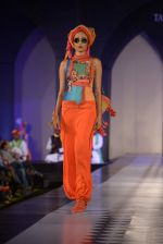 Model walks for Tarun Tahiliani-Azva show in Hyderabad in Tak Krishna on 13th Jan 2015 (205)_54b6622380996.JPG