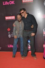 Ketan Mehta at Life Ok Screen Awards red carpet in Mumbai on 14th Jan 2015(204)_54b7ec57bf596.JPG