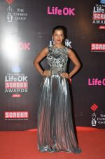 Mugdha Godse at Life Ok Screen Awards red carpet in Mumbai on 14th Jan 2015(493)_54b7ec6d9b1ed.JPG