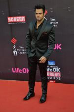 Rithvik Dhanjani at Life Ok Screen Awards red carpet in Mumbai on 14th Jan 2015(184)_54b7ed5f96026.JPG