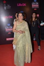 Tanuja at Life Ok Screen Awards red carpet in Mumbai on 14th Jan 2015(420)_54b7ef334055e.JPG