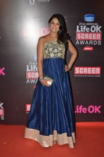 Tejaswini Kolhapure at Life Ok Screen Awards red carpet in Mumbai on 14th Jan 2015(624)_54b7ef33d3aa2.JPG