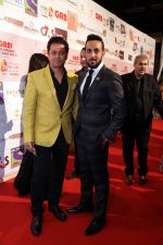 at the Red Carpet of THE GR8! Women Awards-ME 2015, held on the 12th January 2015 at Sofitel, Palms, Dubai (28)_54b8e90601cdc.jpg