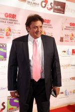 at the Red Carpet of THE GR8! Women Awards-ME 2015, held on the 12th January 2015 at Sofitel, Palms, Dubai (6)_54b8e8dbde417.jpg