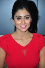 Shriya Saran at Criesse-Ahuja Event for IMFPA on 17th Jan 2015 (1)_54bca3d1e6dee.jpg