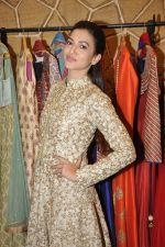 Gauhar Khan at the festive collection launch at the Hue store on 20th Jan 2015 (46)_54bf53c1790b7.JPG