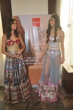 Madhu Sneha at India Beach Fashion Week press meet in J W Marriott, Mumbai on 21st Jan 2015 (28)_54c09eb57f4c3.JPG