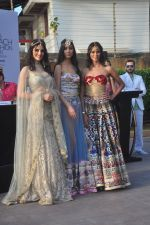 Madhu Sneha at India Beach Fashion Week press meet in J W Marriott, Mumbai on 21st Jan 2015 (55)_54c09eef6858e.JPG