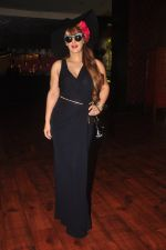Pria Kataria Puri at India Beach Fashion Week press meet in J W Marriott, Mumbai on 21st Jan 2015 (96)_54c09ecd2ddc8.JPG