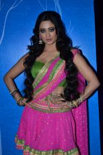 Shweta Tiwari at the launch of new Hindi entertainment channel &TV in Filmcity, Mumbai on 21st Jan 2015 (41)_54c09d4bdd831.JPG