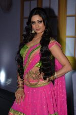 Shweta Tiwari at the launch of new Hindi entertainment channel &TV in Filmcity, Mumbai on 21st Jan 2015 (47)_54c09db463469.JPG