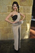 Urvashi Rautela at India Beach Fashion Week press meet in J W Marriott, Mumbai on 21st Jan 2015 (178)_54c09f0883ec2.JPG