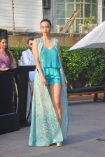 at India Beach Fashion Week press meet in J W Marriott, Mumbai on 21st Jan 2015 (11)_54c09e8e946d5.JPG