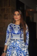 at India Beach Fashion Week press meet in J W Marriott, Mumbai on 21st Jan 2015 (131)_54c09f02360fc.JPG