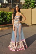 at India Beach Fashion Week press meet in J W Marriott, Mumbai on 21st Jan 2015 (133)_54c09f0493cef.JPG