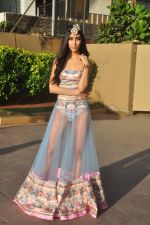 at India Beach Fashion Week press meet in J W Marriott, Mumbai on 21st Jan 2015 (135)_54c09f06f1b3f.JPG