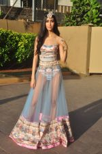 at India Beach Fashion Week press meet in J W Marriott, Mumbai on 21st Jan 2015 (139)_54c09f0c59ed1.JPG